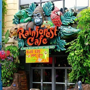 graphic about Rainforest Cafe Printable Coupon referred to as Rainforest restaurant coupon - Brand name Cost savings